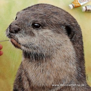 How to paint an easy watercolor otter