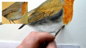 How to paint a robin in watercolour step 3