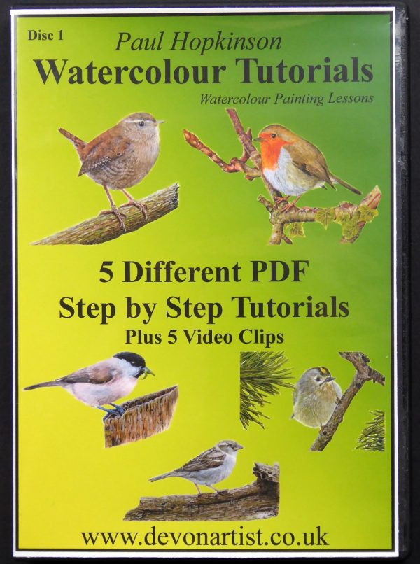 Learn How to Paint Birds in Watercolor, Art Tutorials