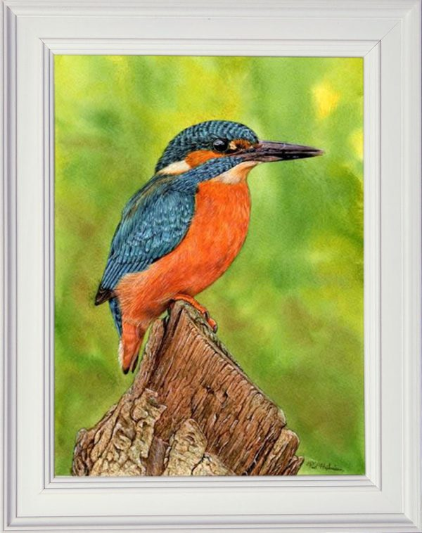 Realistic watercolour kingfisher painting tutorial, stage 4