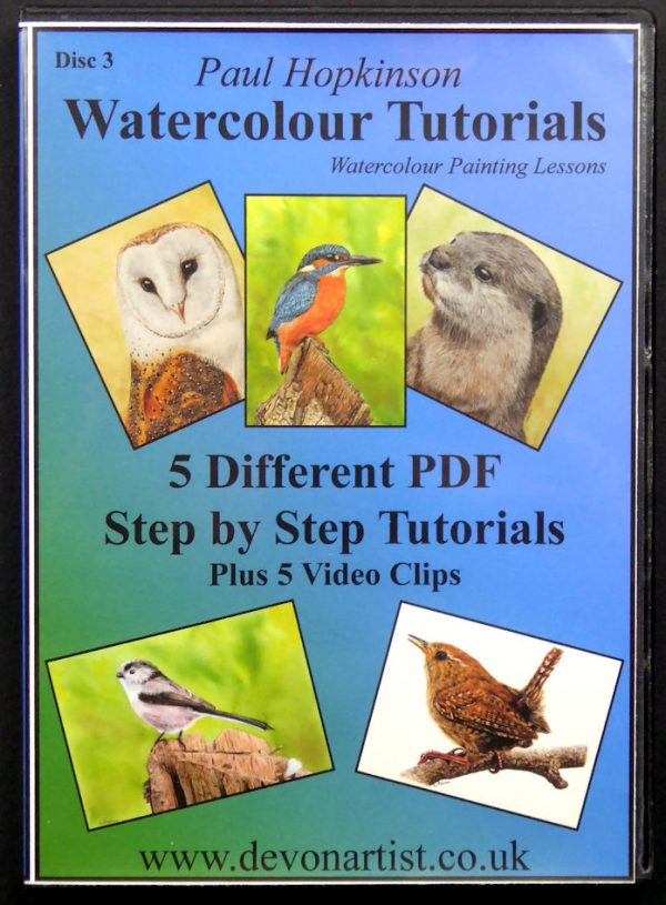 Learn to paint animals and birds in watercolour with a PDF lesson CD