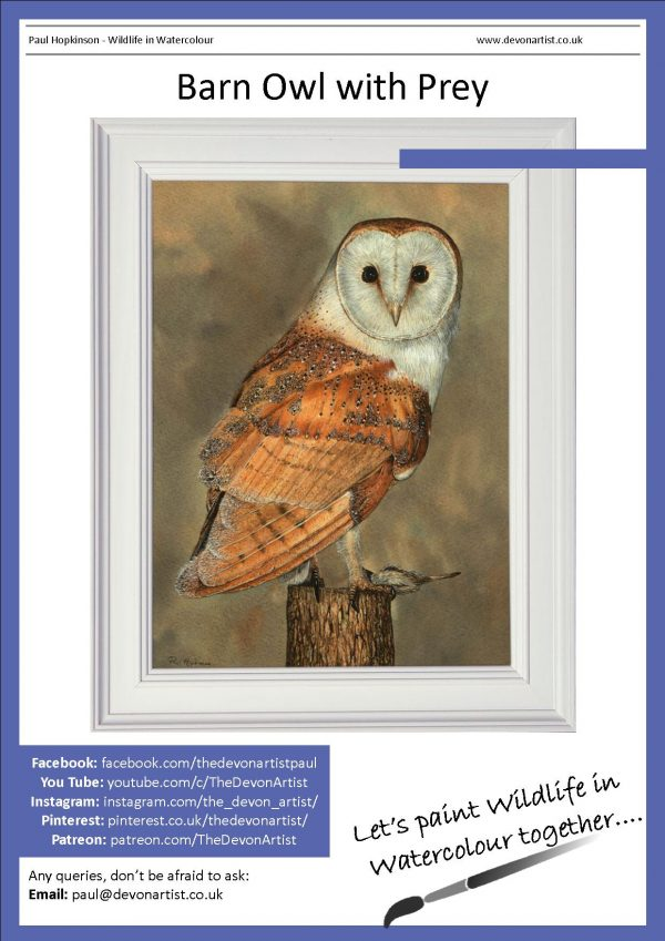 Learn to paint owls in realistic watercolour