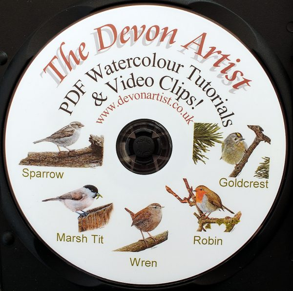 Learn to paint birds in realistic watercolour, lesson CD
