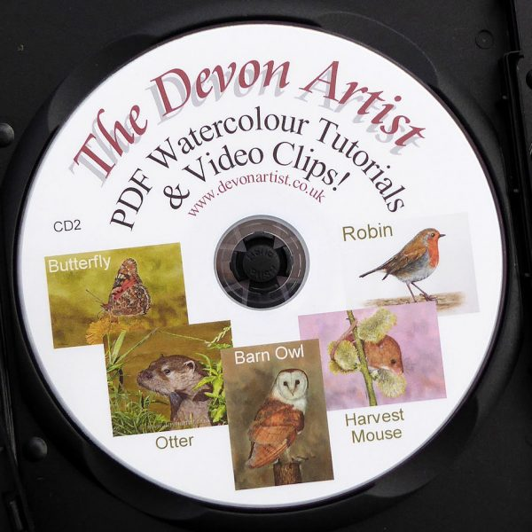 Learn to paint wildlife with a watercolour lesson cd