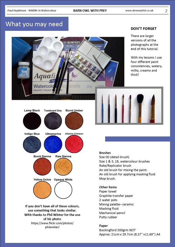 Materials needed to paint owls in watercolor