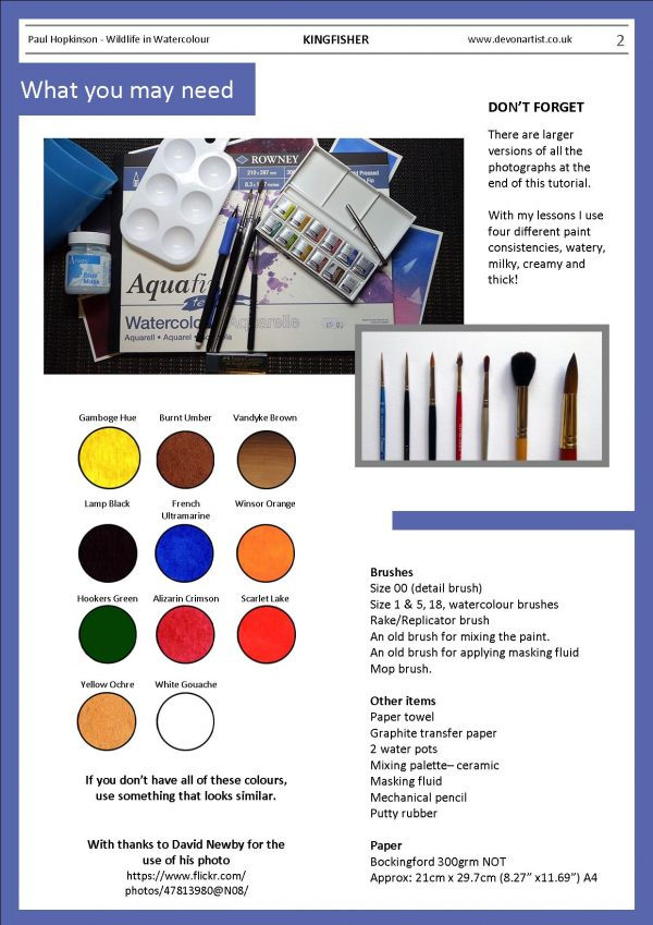 Materials needed to paint a realistic kingfisher in watercolor