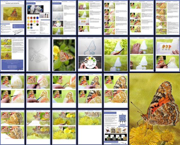 Overview image of a butterfly watercolor pdf tutorial