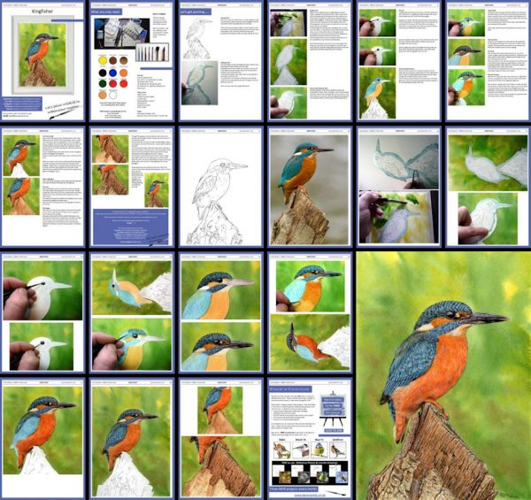 Overview image of a PDF watercolour kingfisher painting tutorial