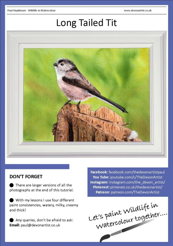 PDF download watercolour bird painting tutorial