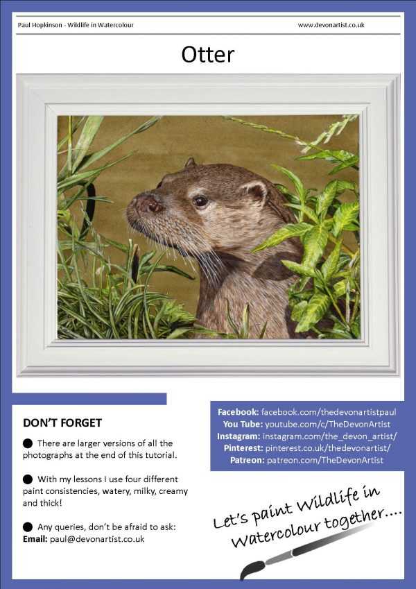 PDF watercolor lesson on a realistic otter painting