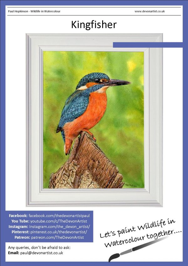 PDF watercolor tutorial how to paint kingfishers