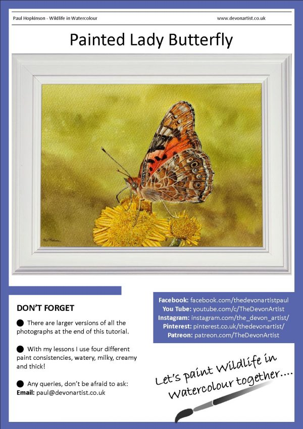 PDF watercolour painting tutorial on a butterfly illustration
