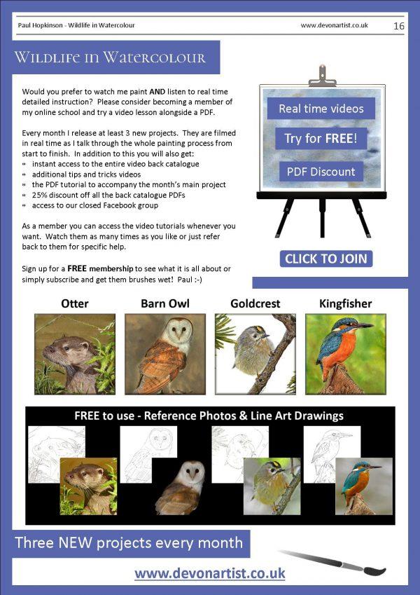 Paul Hopkinson watercolor wildlife pdf tutorials