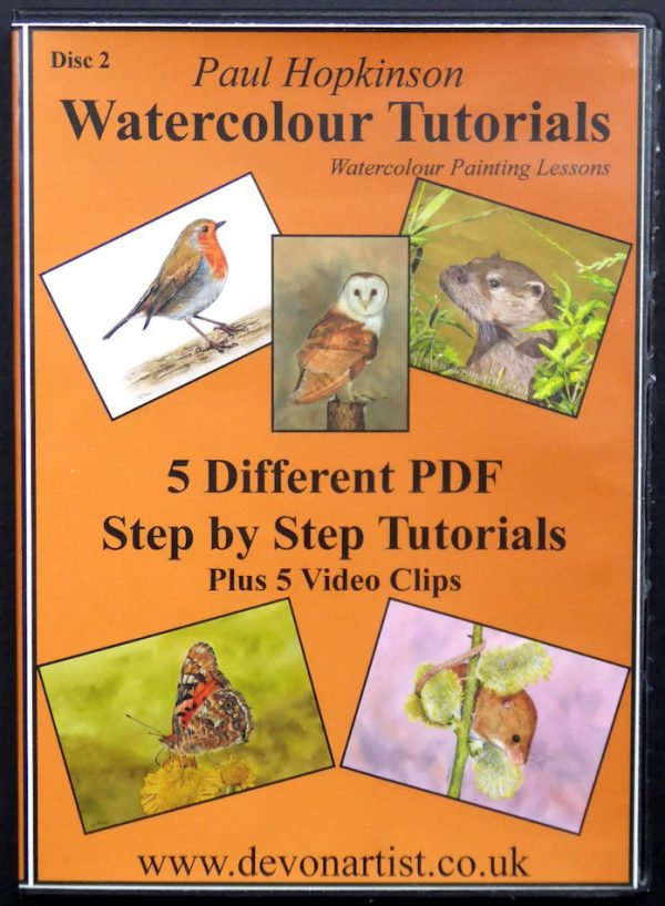 Paul Hopkinson watercolour wildlife lesson cd
