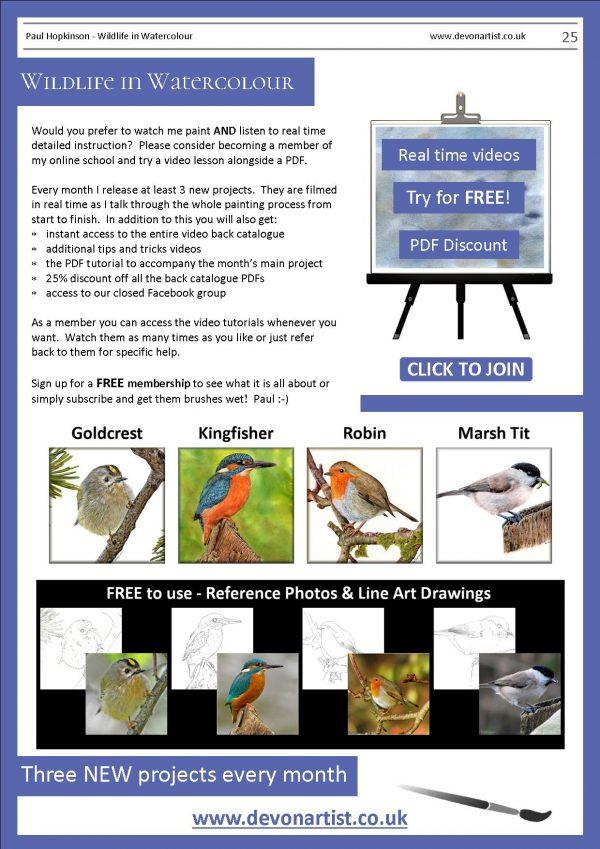 Paul Hopkinson wildlife PDF watercolor lessons