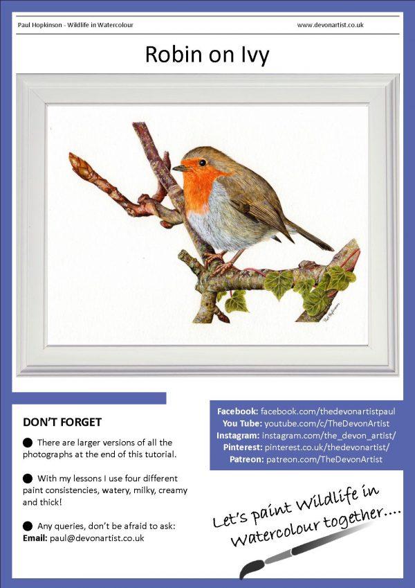 Robin PDF watercolour painting tutorial