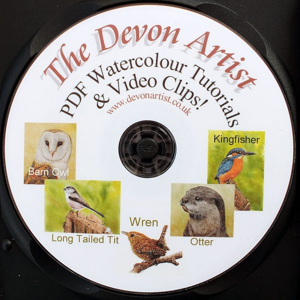 Watercolour wildlife PDF painting lesson CD