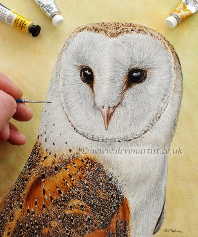 How to paint an owl. Detailed step by step lesson using watercolour