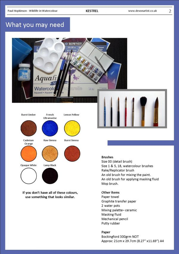 Materials needed to paint a kestrel in detailed watercolor