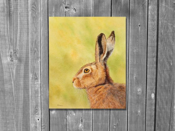 Watercolor painting of a hare by Paul Hopkinson on a wall