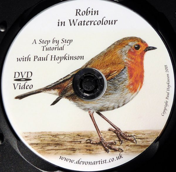 How to paint a watercolour robin, DVD video tutorial