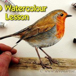 Step by Step Robin Watercolour, Fine Art DVD Tutorial