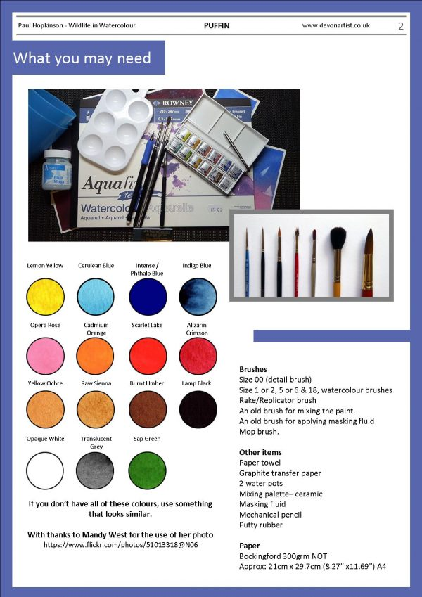 Materials needed to paint a puffin bird in watercolour