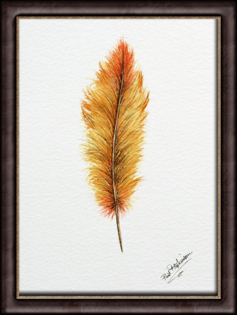 Original watercolor feather artwork, shown framed