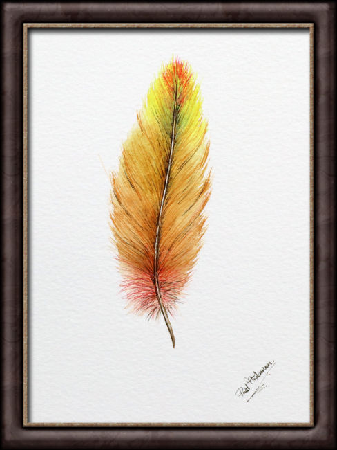 Original watercolor feather painting by Paul Hopkinson