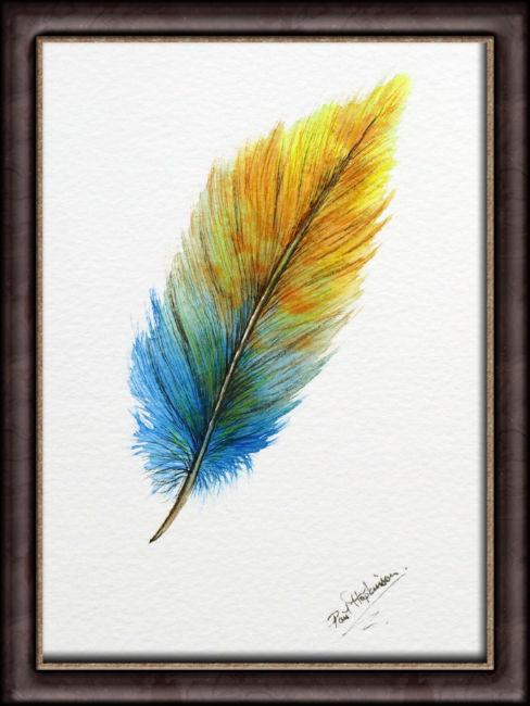 Original watercolour feather artwork, shown framed