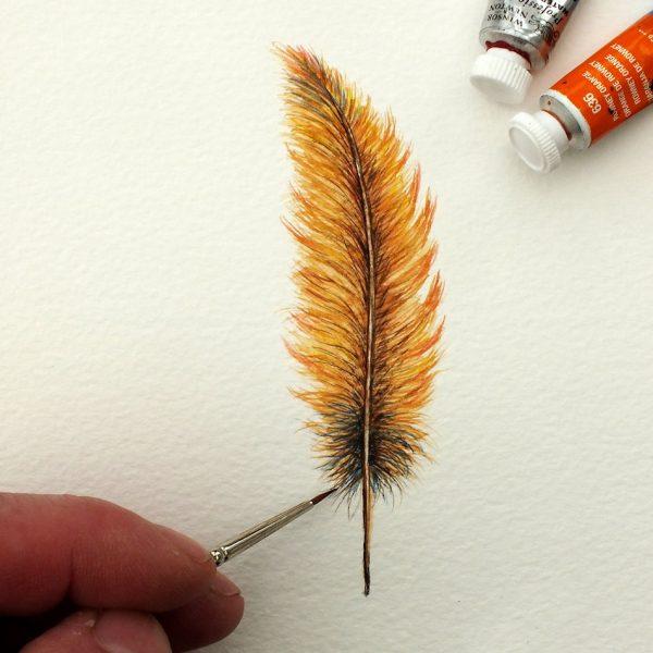 The Devon Artist original watercolour feather painting