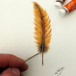 Watercolour Painting of a Bird's Feather, Original Art