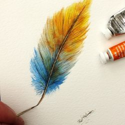 Watercolour Feather Paintings