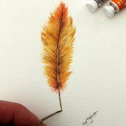Original Watercolour Feather Illustration - Fine Art