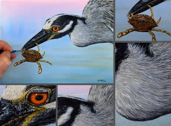 Close up photos of a heron watercolor painting by Paul Hopkinson