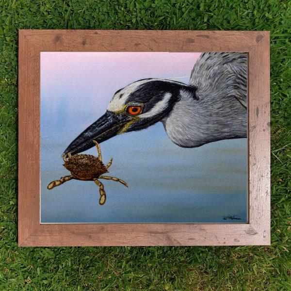 Framed watercolor heron illustration by Paul Hopkinson