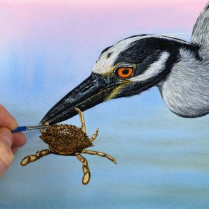 Heron painted in realistic watercolour by The Devon Artist