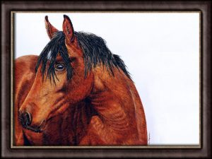 Original Watercolour Horse Portrait, Fine Art Detail