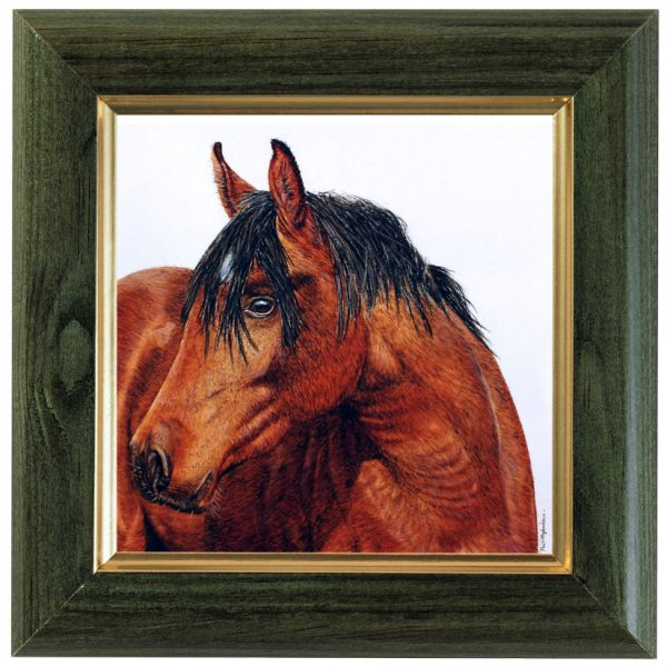 Original watercolour horse painting by Paul Hopkinson displayed framed