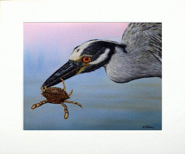 Paul Hopkinson wildlife artist & online art tutor, watercolour heron painting