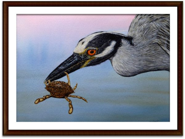 Watercolor heron painting by Paul Hopkinson, shown framed