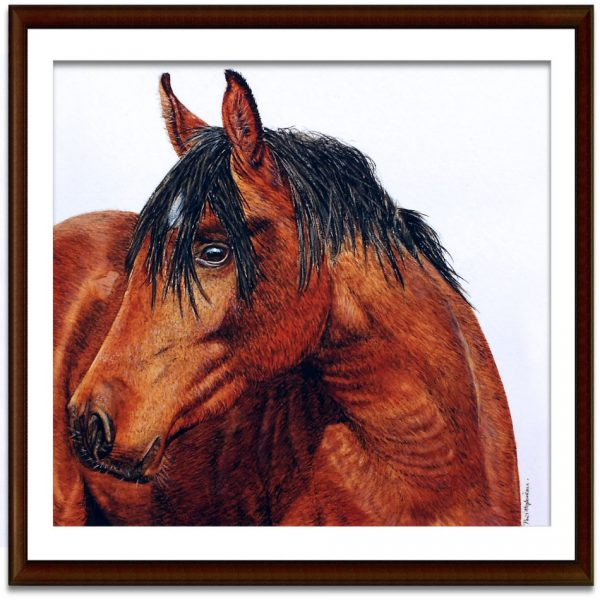 Watercolor horse painting by Paul Hopkinson shown framed