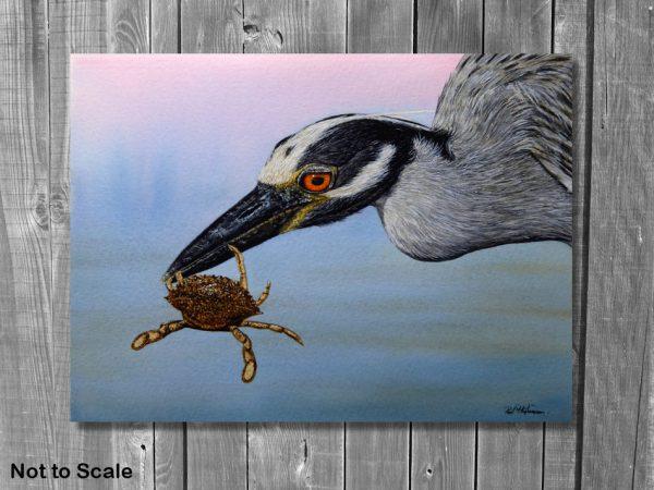 Watercolor wildlife artist Paul Hopkinson, heron painting displayed