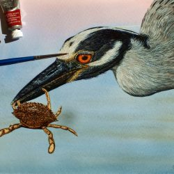 Original watercolour painting of a heron by Paul Hopkinson