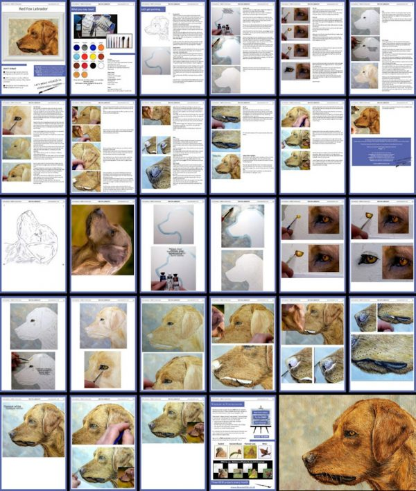 Overview image of a watercolor dog portrait painting lesson