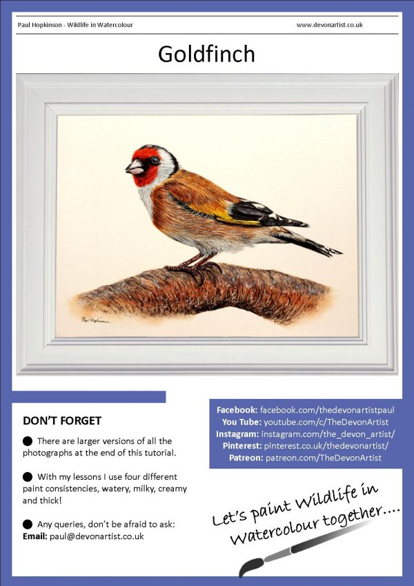 PDF watercolor tutorial of a bird painting in a realistic style