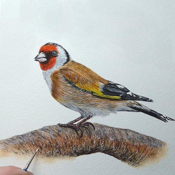 Paul Hopkinson painting a realistic garden bird