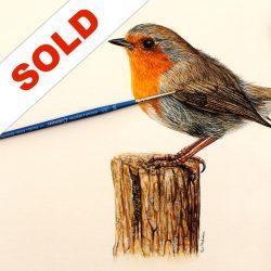Robin Watercolour Sold