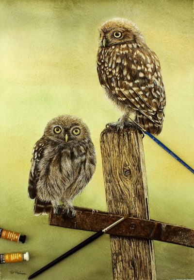 Realistic detail watercolour painting of two little owls