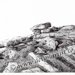 Dartmoor landscape pen and ink by Paul Hopkinson, Lynch Tor